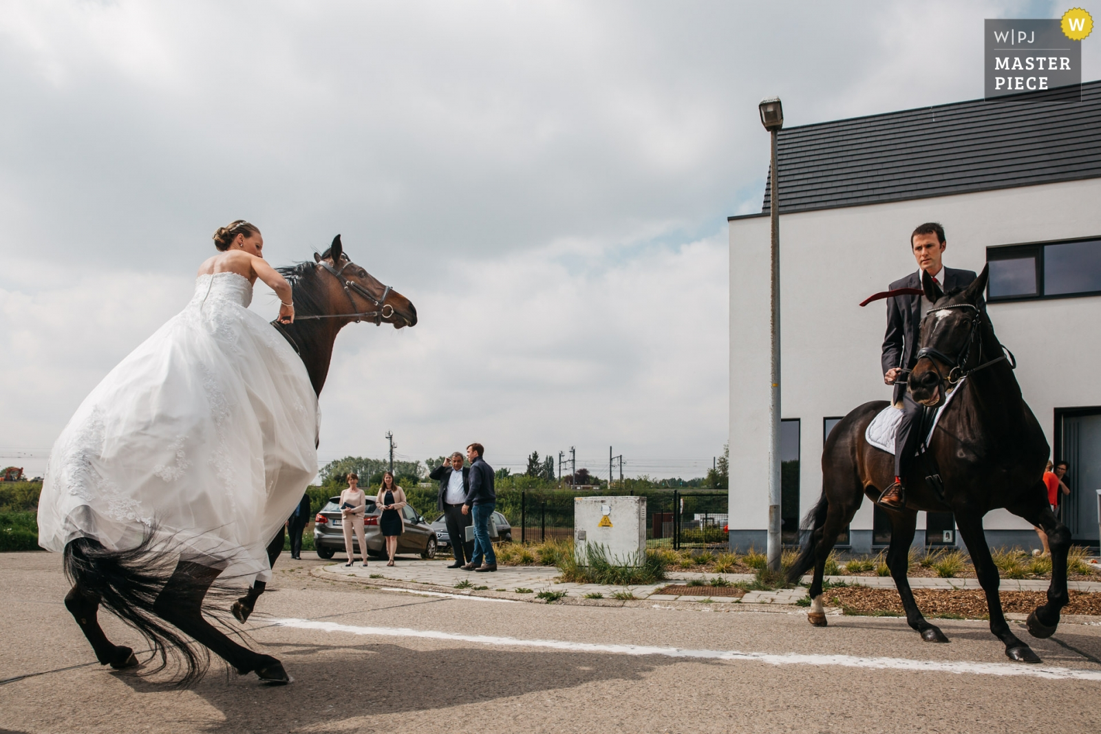 Bride and groom are getting ready to go to the city hall by horse, and try to comfort their horses. - Antwerpen, Flanders Wedding Photography -  | the street in front of the Groom and bride's house