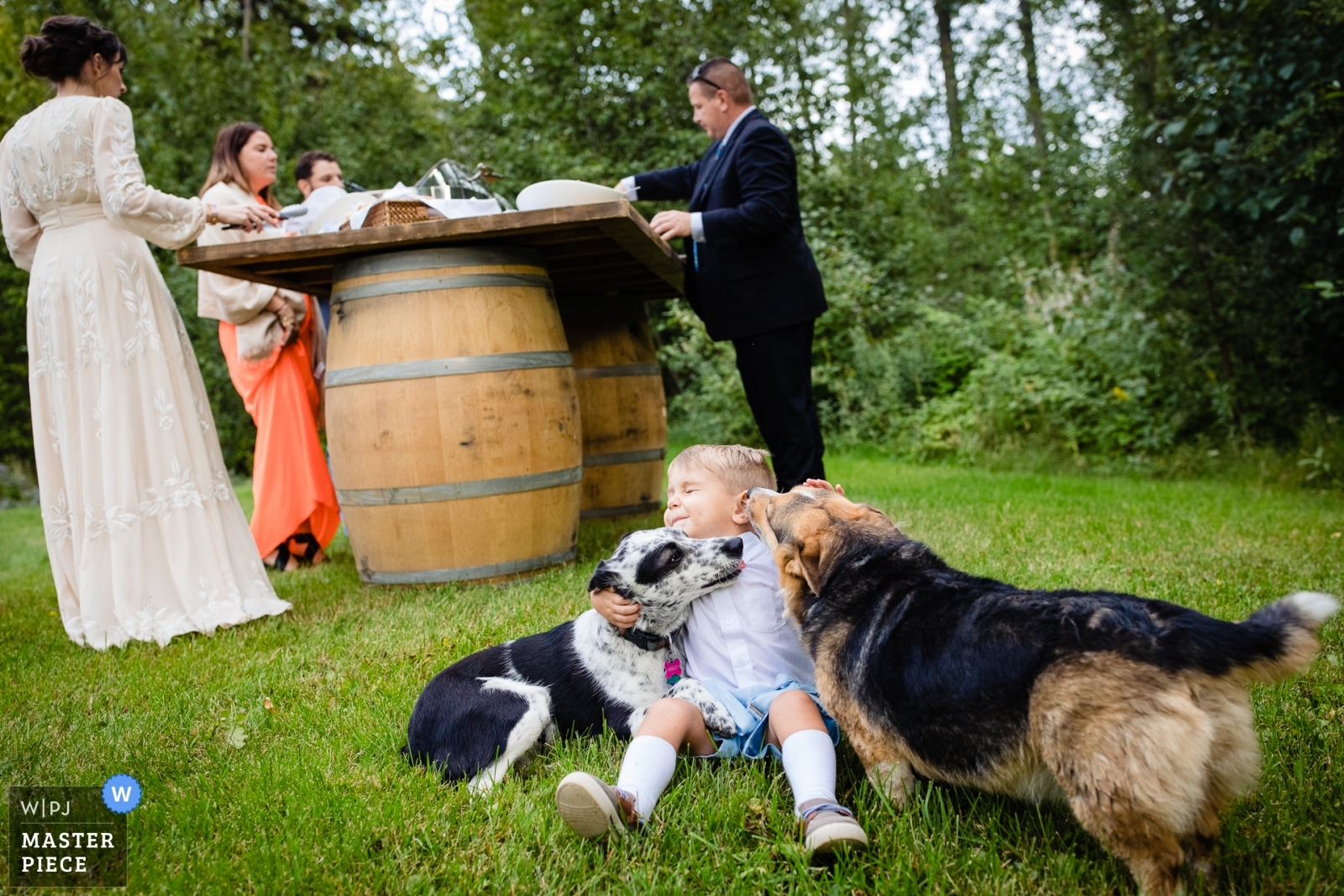 ring bearer gets attacked by licking dogs - Missoula, Montana Wedding Photography -  | Stryker, Montana