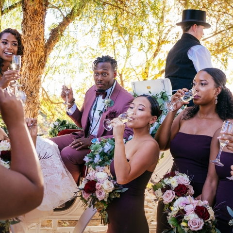 Couple cheers with the wedding party - San Diego, California - Southern Wedding Photography -  | Temecula, Ca